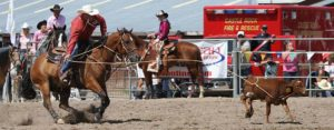 Hometown Rodeo and Community Day at the Fairgrounds @ Douglas County Fairgrounds