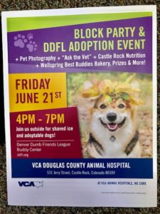 Block Party & DDFL Adoption Event @ VCA Douglas County Animal Hospital